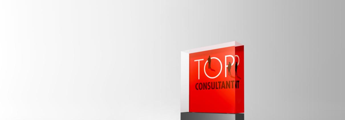 Unternehmensberatung in Hamburg ausgezeichnet als Top Consultant 2020